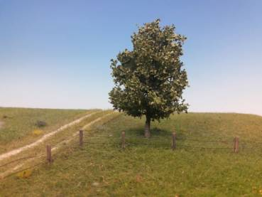 Mininatur - Exclusive model trees and greening materials for model